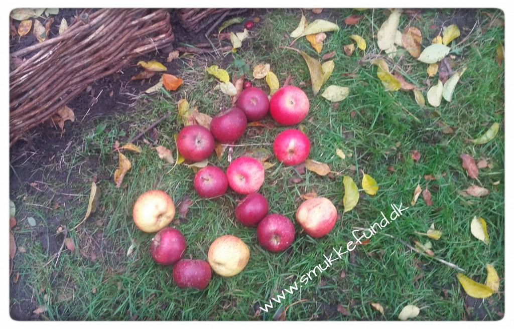 æblehøst